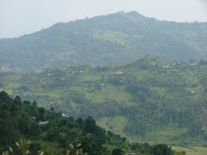 District landscape in the Hills
