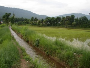 Irrigation canal in another village