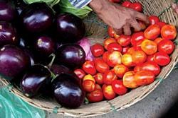 More choose organic: vegetables on the market